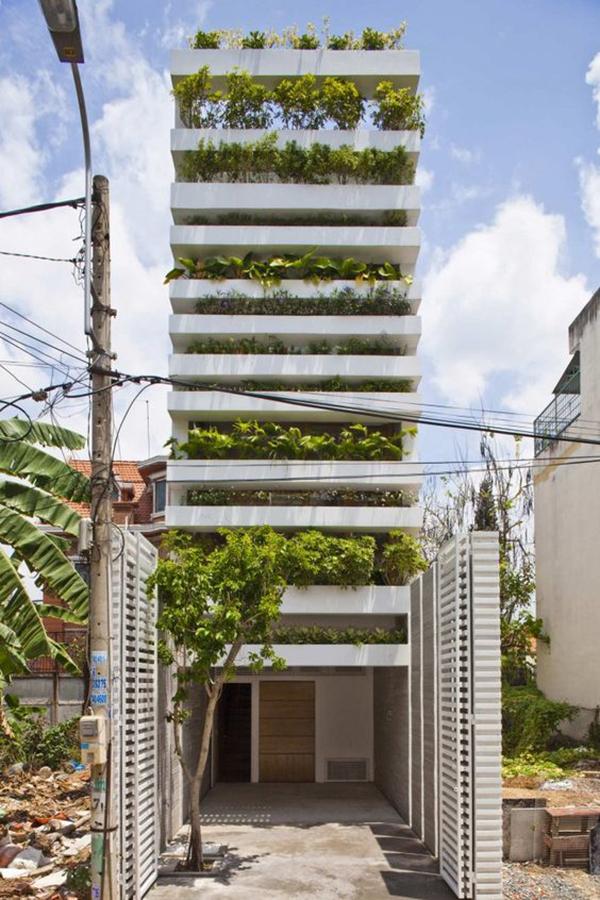 trồng cây xanh che nắng