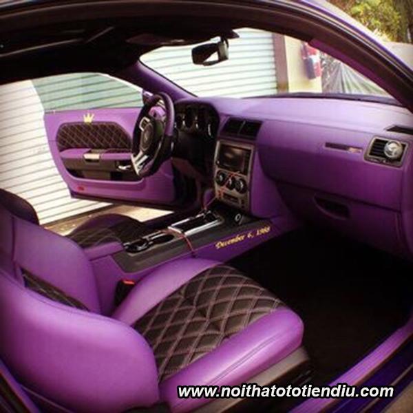 đổi màu nội thất ô tô độc